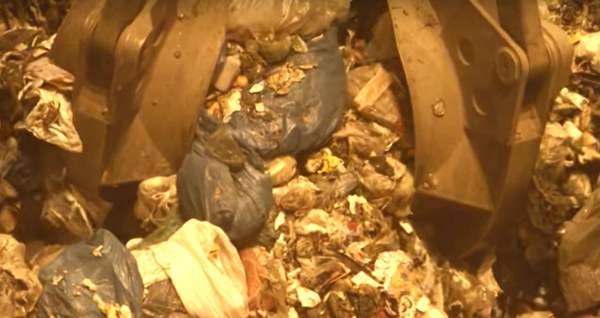 Auch Behörden gegen Müllentsorgung von Moskau nach Archangelsk