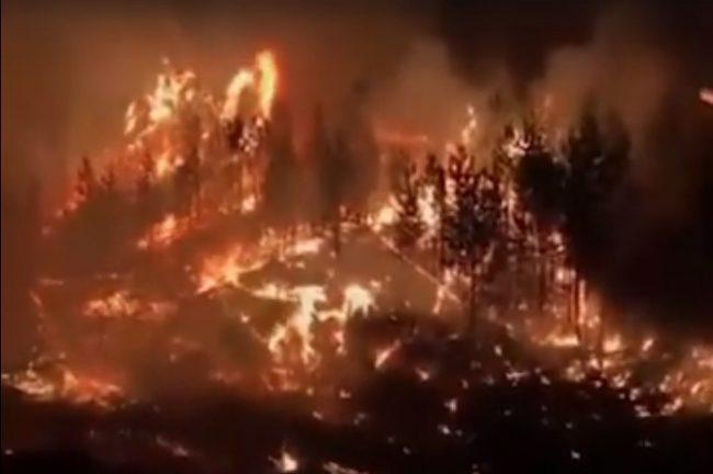 Waldbrandfläche in Russland um achttausend Hektar pro Tag erhöht