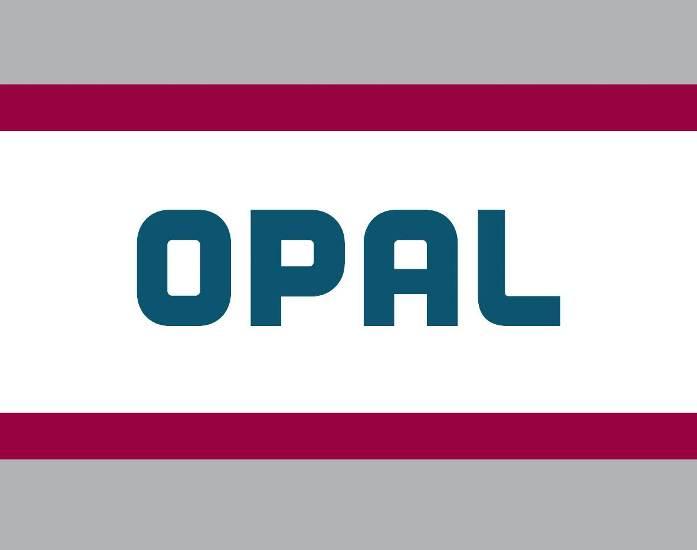 Deutschland legt Berufung gegen EU-Gerichtsurteil zur OPAL ein
